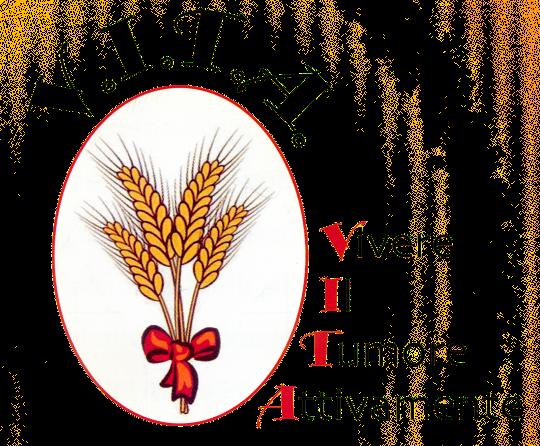 logo_vita